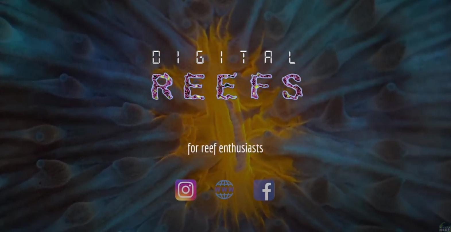 Digital-Reefs Teaser Trailer Now Live.